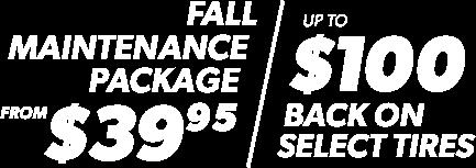 Fall maintenance package