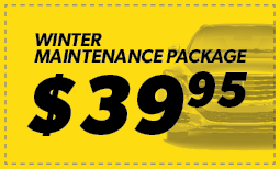 Winter Maintenance Package $39.95